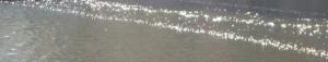 alsterdampferwelle