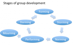 group_development