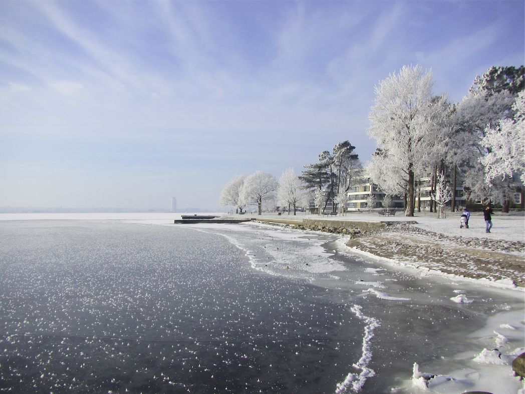 Frost flowers on the ice of the Schlei in Schleswig. By Mirjam S. Glessmer