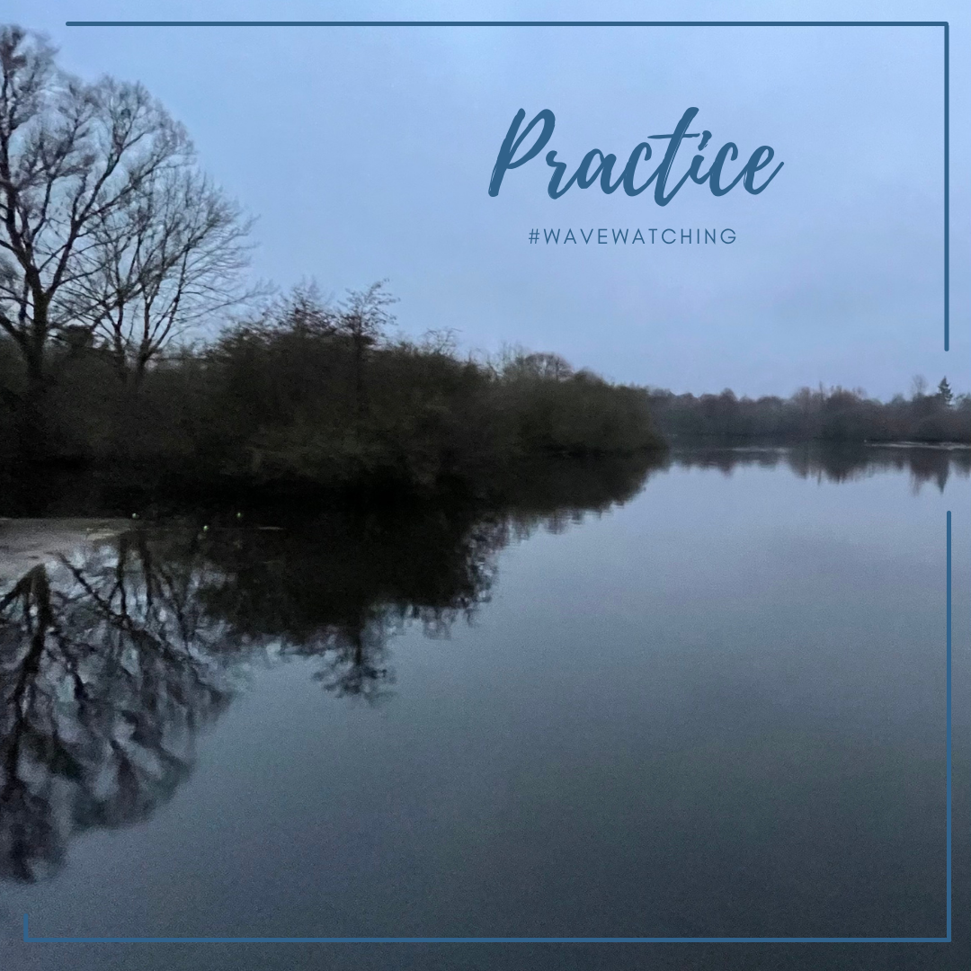 "[Photo with text] A calm lake on a grey morning; reflection of bushes and trees. Text says ""Practice"" and ""#WaveWatching"""